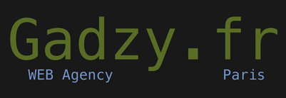 Gadzy.fr - Web Agency - Paris